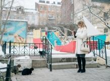 Кошки во дворах Санкт-Петербурга