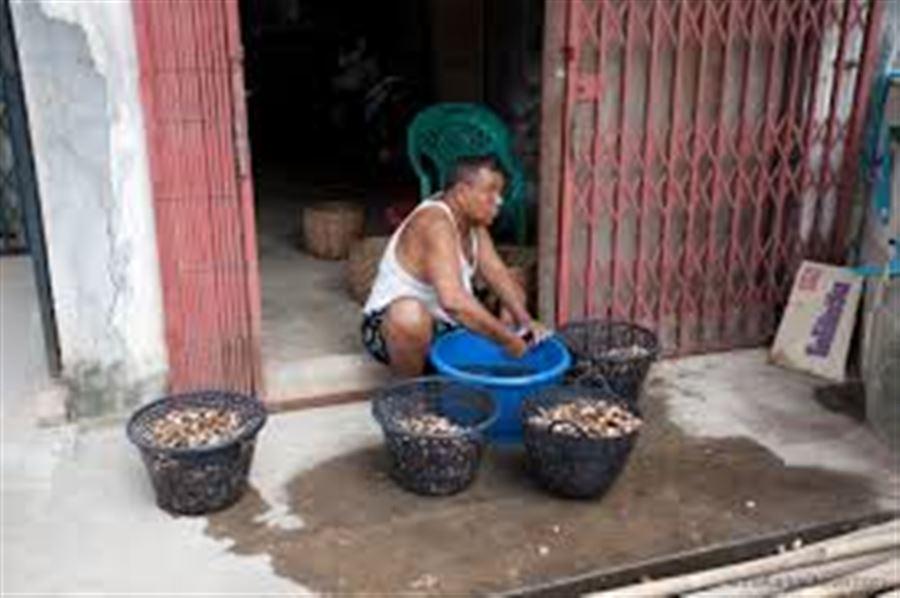 Бирманские орешки