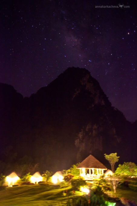 The Cliff River & Jungle at night