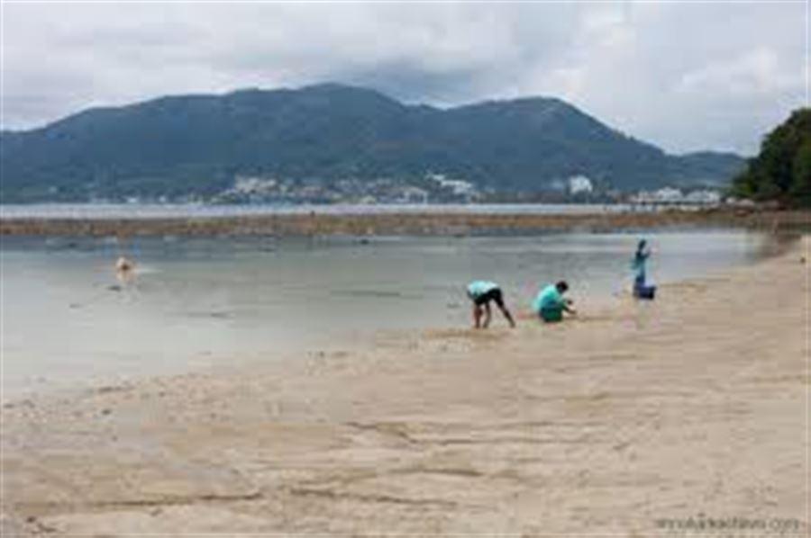 Отлив на пляже Три Транг