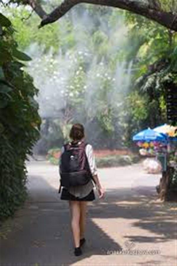 Система охлаждения в Сафари Парке в Бангкоке