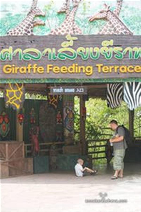 Терраса для кормления жирафов в Марин Парке,  Бангкок