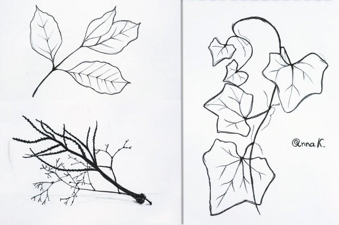 Уроки рисования на Пхукете