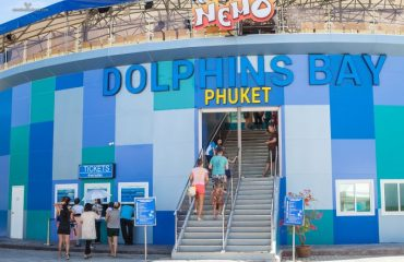 НЕМО дельфинарий на Пхукете