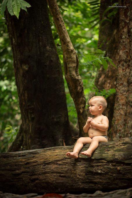 Sa Nang Manora Forest