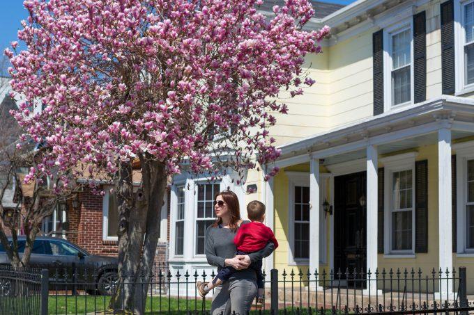 Улицы Бэй Ридж во время цветения вишни