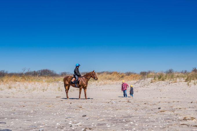 Конный полицейский на пляже в Нью Йорке