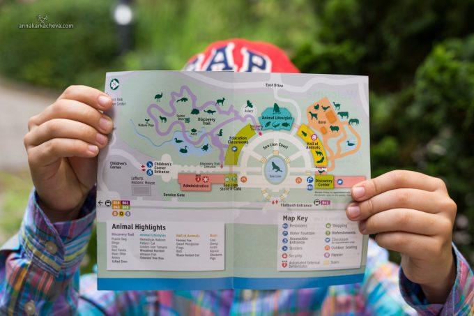 План Зоопарка в Проспект Парке