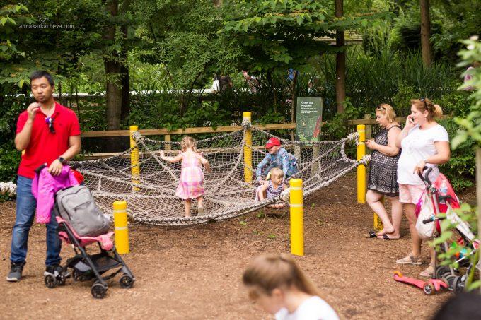 Площадка в Зоопарке Проспет Парк