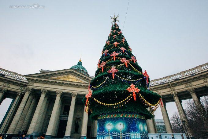 Елка у главного собора Санкт-Петербурга