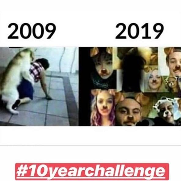 10yearschallenge Snapchat dog's generation